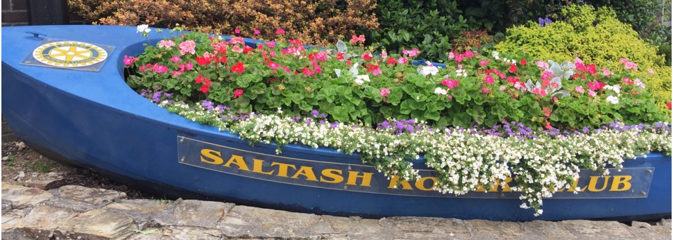 Rotary adding colour to Saltash
