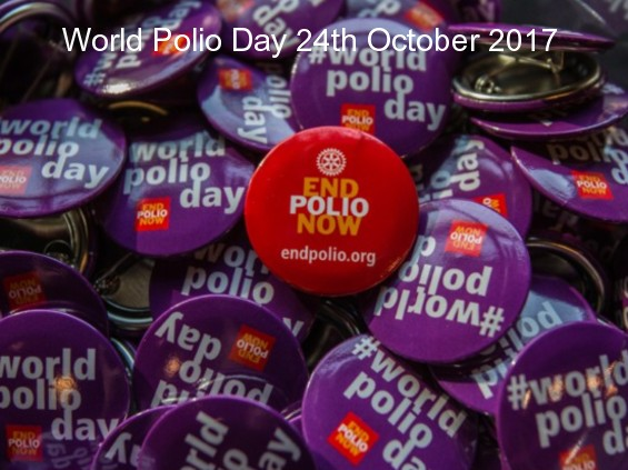 World Polio Day 24th October web site